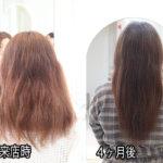 髪質改善で髪を綺麗にして誰もが羨む姿へ…