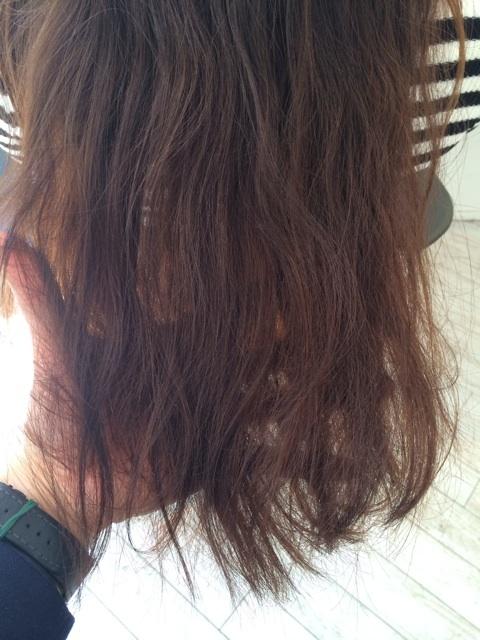 髪の毛の先がパサパサで髪の毛が多いのかツヤがでません。 どーしたらいいですか?