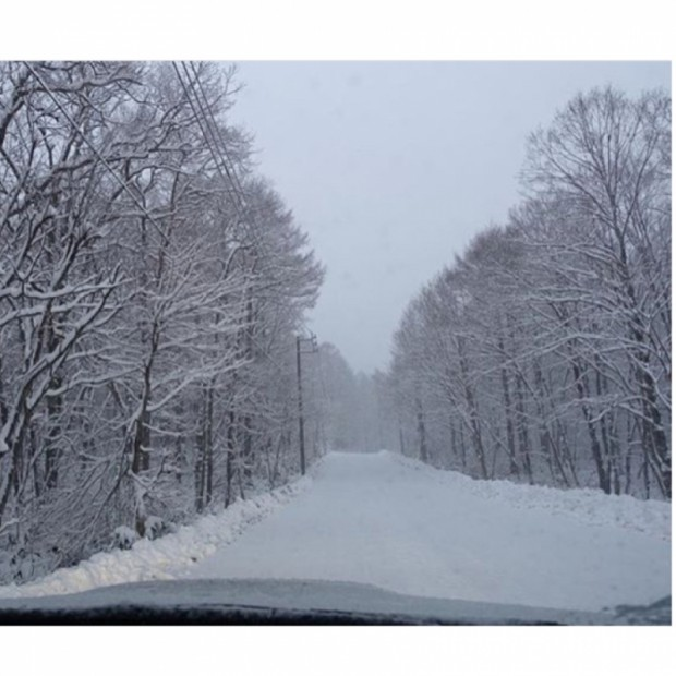 今年の初雪をみなさんにお届けです〜♡