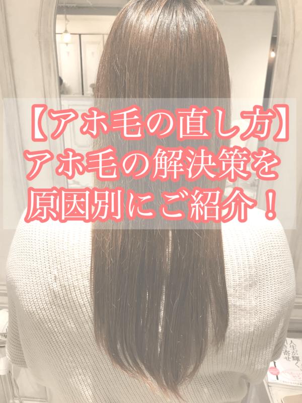 毛 髪 アホ